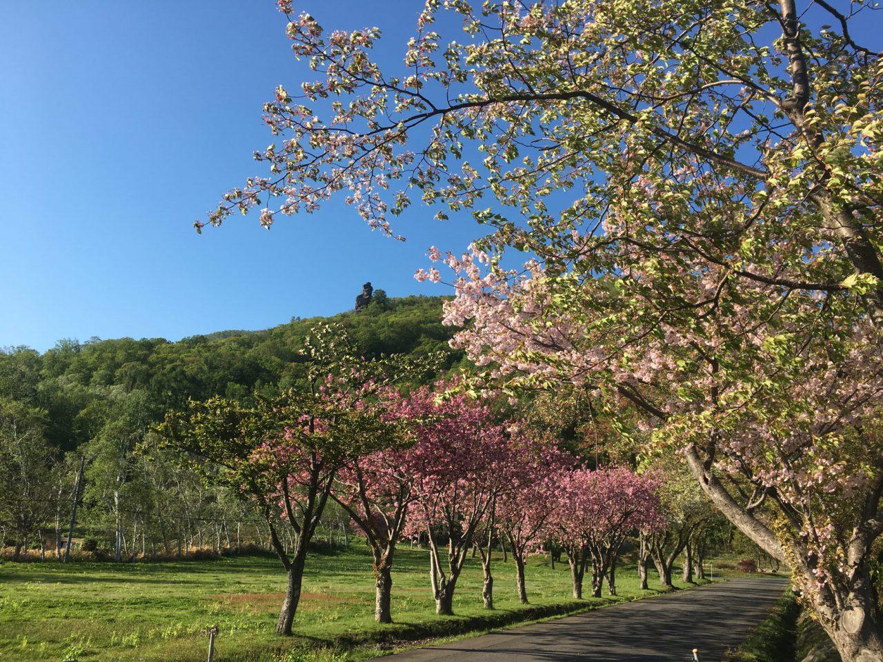 北海道のえぼし岩