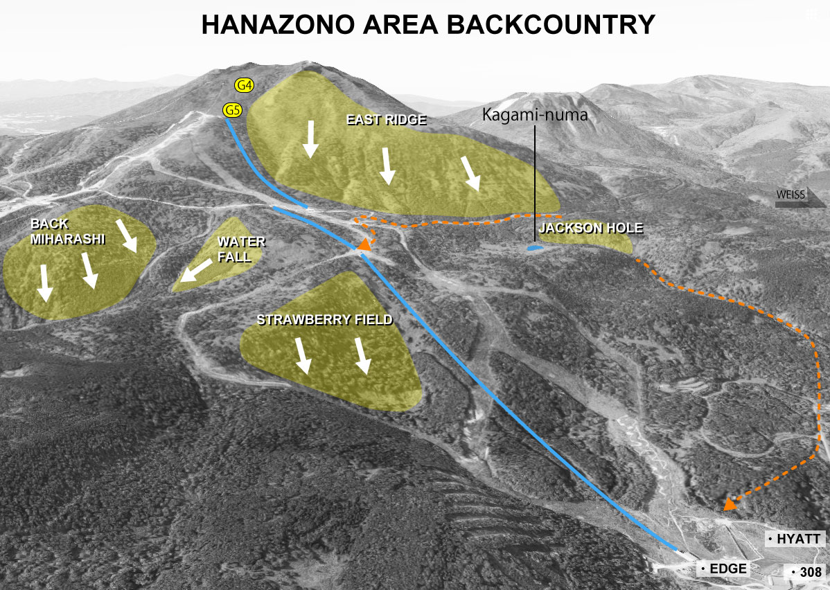 Hanazonoのパウダー