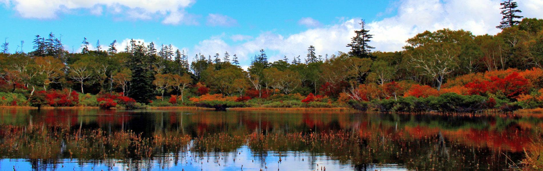 ニセコの秋
