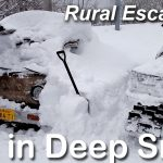 Life in Deep Snow
