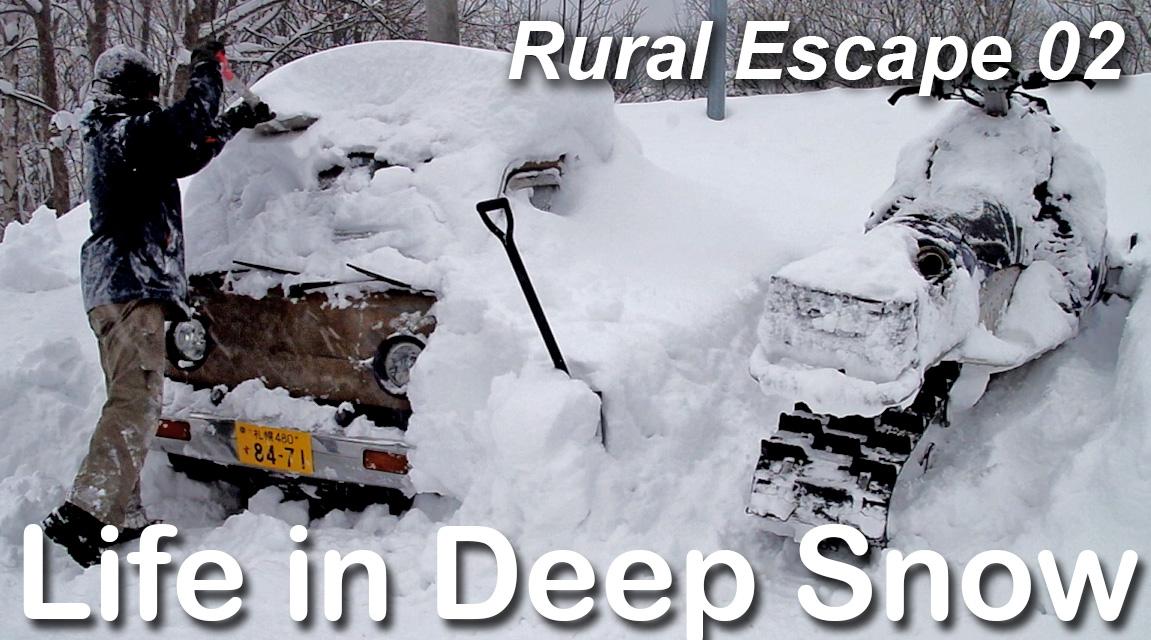 Life in Deep Snow